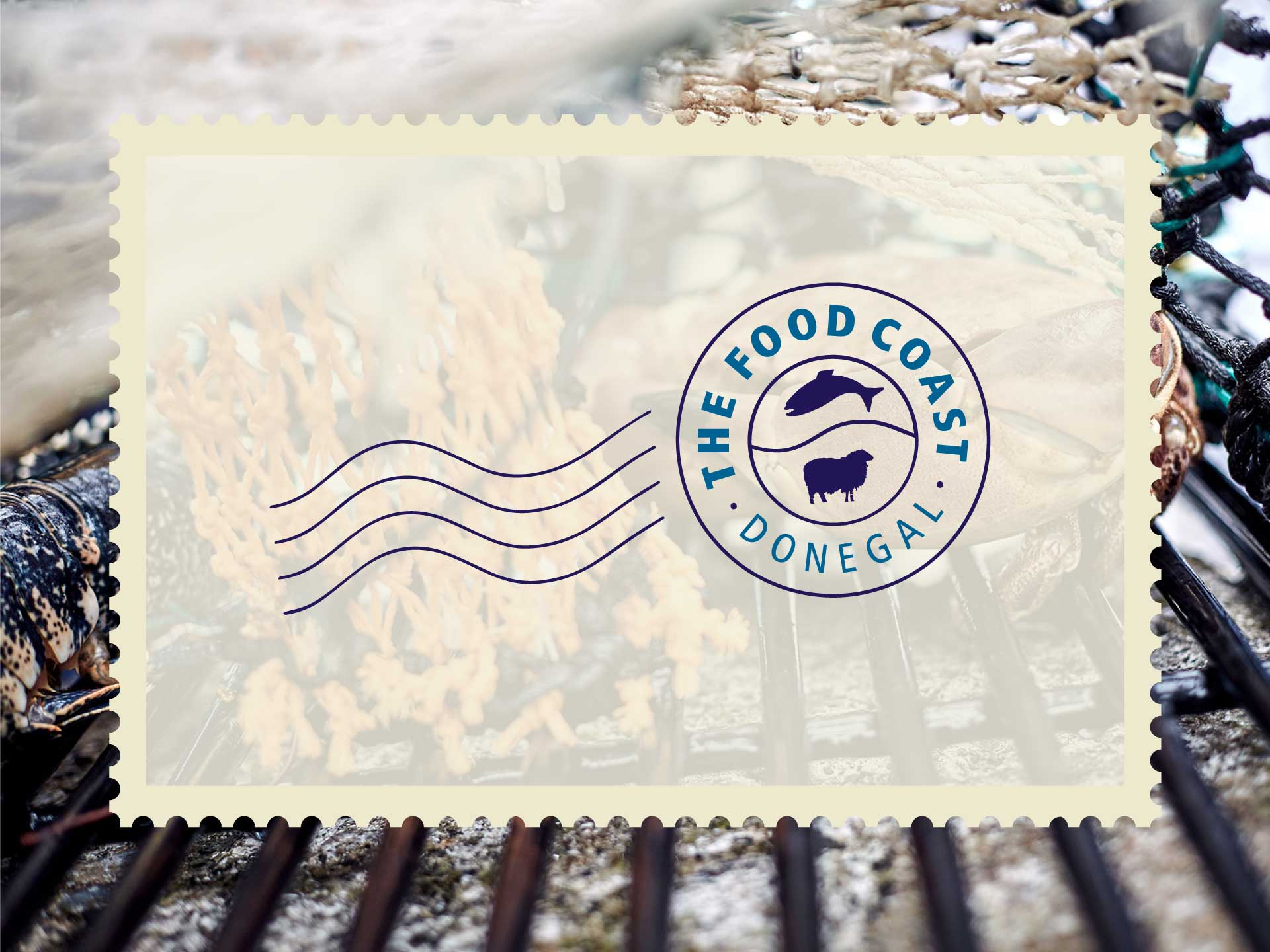 Food Coast Donegal e-Newsletter Digital Design